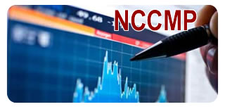 NSE Certified Capital Market Professional-NCCMP